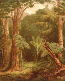 John Gully, New Zealand forest vegetation