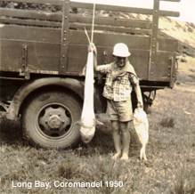 Graeme Woodhouse, Long Bay, Coromandel 1950